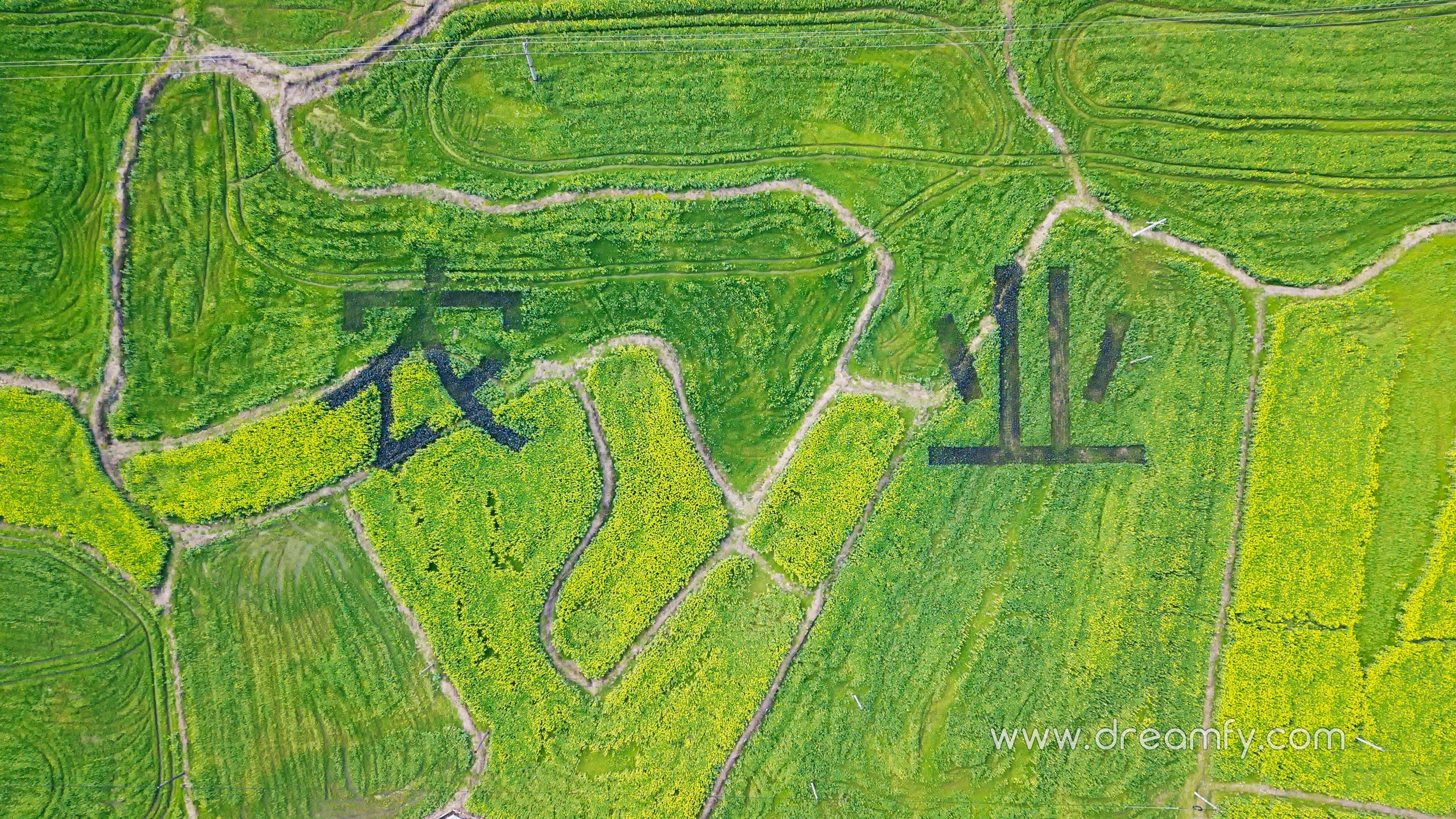 惠清生态农业